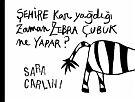 """Sara Carlini, Şehire kar yağdığı zaman zebra çubuk ne yapar? SchauHör Verlag. Schnee kannte das Zebra bisher nur aus dem Fernsehen, deshalb schaut es im Buch """"Was tun Zebras wenn es schneit?"""" nach, was zu tun ist. Es findet viele Anregungen: Ein heißes Ba"""